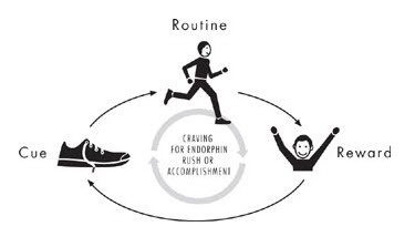 Exercise-habit-loop